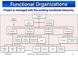 Example Of Functional Chart Functional Organization The Advantages And The Disadvantages