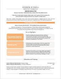 professional resume examples by gayle howard top margin executive cvs executive resume example