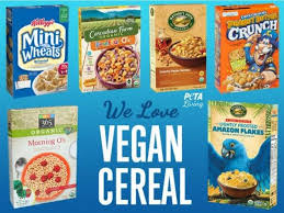 we owe a debt of graude to this great food so we ve piled a list of some of our favorite cold vegan cereal options