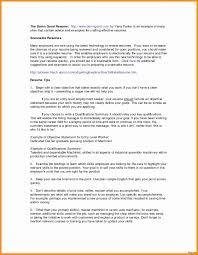 Resume Bullet Points Period Elegant Resume Template For Job