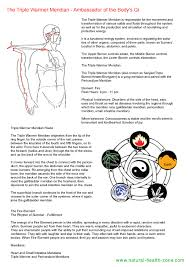The Body Meridians Part 2 15 Relax Massage By Choy