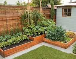 Small Picture Great Small Backyard Vegetable Garden Ideas Small Vegetable Garden