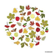 Apples To Apples Card Template Circle Made Of Hand Sketched Different Leaves Acorns Apples