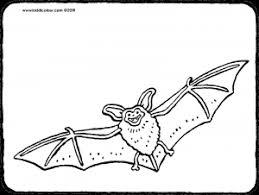 Vleermuis Kiddicolour