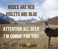Funny Hunting Quotes