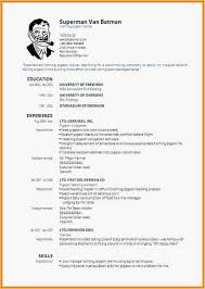 Free Resume Builder And Print Mesmerizing Best Free Resume Builder Beautiful Free Resume Maker And Print