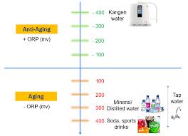 Orp Chart 3 Kangen Wiz Global Pte Ltd