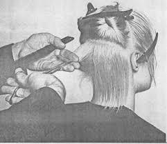Дипломная работа Современные стрижки мужские и женские волос  Дипломная работа Современные стрижки мужские и женские волос Виды и фасоны стрижек ru
