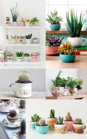 27 best gardening images on Pinterest | Gardening, Plants and Succulents