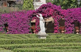 Resultado de imagen de jardin de monforte en valencia