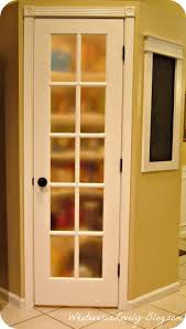 Diy Frosted Glass Door 19 Best Kitchen Pantries Images On Pinterest