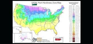 garden zones map plant hardiness zones plant hardiness zone garden planting zone hardiness zones plant hardiness garden zones