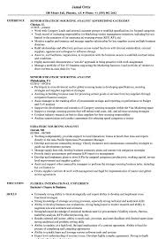 Sourcinge Analyst Sample Resume Sourcinge Analyst Sample Resume shalomhouseus 1