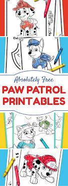 Best 25 Paw Patrol Birthday Ideas On Pinterest Paw Patrol Party