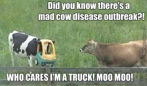 Mad Cow Disease by troll1403 - Meme Center via Relatably.com