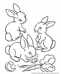 farm coloring page rabbits eating carrots