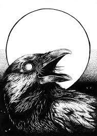картинки по запросу Crow Art Bw Art ворон тату эскиз тату ворон