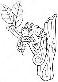 Kleurplaten Wilde Dieren Kleine Schattige Kameleon Zit Op De