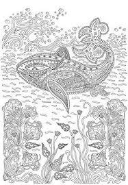 Walvis Vectoren Illustraties En Clipart 123rf