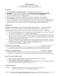 Resume Forms Online Babysitter Description Resume Forms Online Income Tax Preparer 60