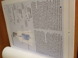 the john hopkins white papers diabetes md simeon margolis md phd the john hopkins white papers diabetes md simeon margolis md phd christopher d saudek com books