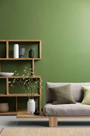 green wall paintGreen Wall Paint  Inside Home Project Design