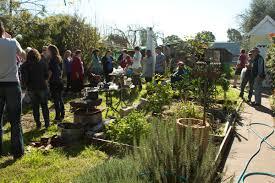 Kitchen Gardeners Backyard Chickens With The Guildford Kitchen Gardeners