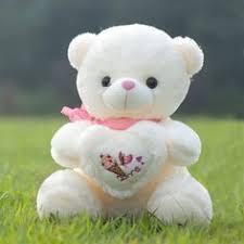 teddy bear sweetie cutie teddy bear service provider from new delhi