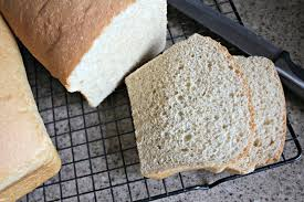 What Bread Will Mold Faster White Research Paper Academic Service