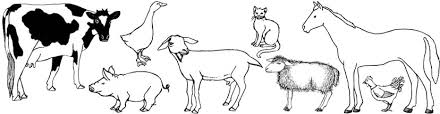 Small Picture Farm Animals Pets and Gardens Coloring Pages