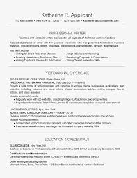 Another Word For Work Experience Professional Writer Resume Example And Writing Tips