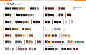 Kenra Color Chart Kenra Sm Color Chart Www Bedowntowndaytona Com