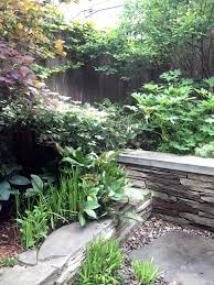 hostas and hellebores planted in clumps in a shady new york city backyard designed by