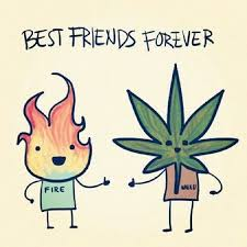 Best Friend Forever Fire Weed = Happiness Marijuana Weed Extraordinary Stoner Friendship Quotes