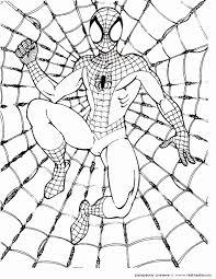 55 Mooi Spiderman Kleurplaat Afbeeldingen Kleurplaatsite