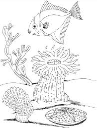 Coloring Pages Plants Download Or Print These Amazing Plants