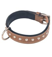 dog leather puppy neck collar