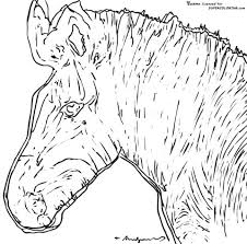 Small Picture Zebra By Andy Warhol coloring page Free Printable Coloring Pages