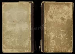 beautiful cover of a vine book with fl frame an blank label for your text