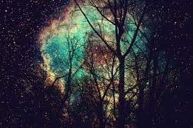 background tumblr galaxy gif. Interesting Background Animated GIF Crazy Night Free Download Galaxy Trees To Background Tumblr Galaxy Gif I