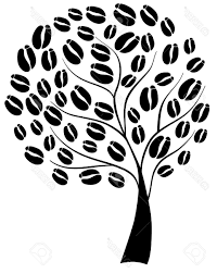 Polish your personal project or design with these cartoon tree transparent png images, make it even more personalized and more attractive. Coffee Tree Sketch Page 3 Line 17qq Com