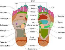 Eunice Ingham Reflexology Chart Reflexology New Jersey Center Alist Wellness Center