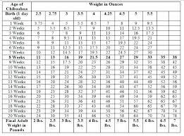 Newborn Growth Chart Newborn Growth Charts Weight Of Puppy Labrador Growth Chart
