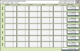 Meal Tracker Spreadsheet With Spreadsheet Software Online