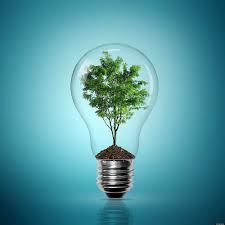 eco friendly lighting.  Eco Eco Friendly Light Bulb Inside Friendly Lighting