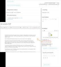 essay about netflix questions
