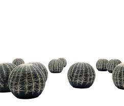 innovative furniture ideas. innovative seating design ideas for home interior furniture tattoo cactus by cerruti baleri s