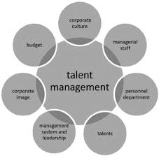 Talent Management System Internal Conditions Of Eff Ective Talent Management Source