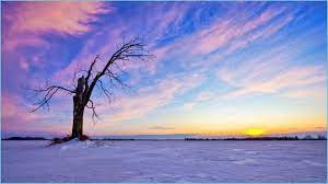 Aesthetic Landscape Wallpapers - Top ...