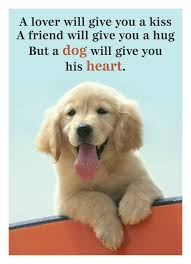 Dog Quotes Inspirational Classy 48 Inspirational Quotes All Dog Lovers Should Know